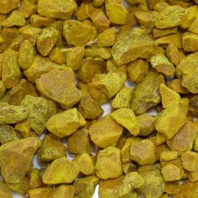 Curcuma coupe bio Curry Ras el Hanout Garam Masala Zingibéracées digestion anti-inflammatoire