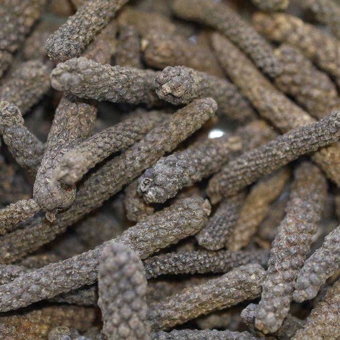 poivre long bio Inde piper longum